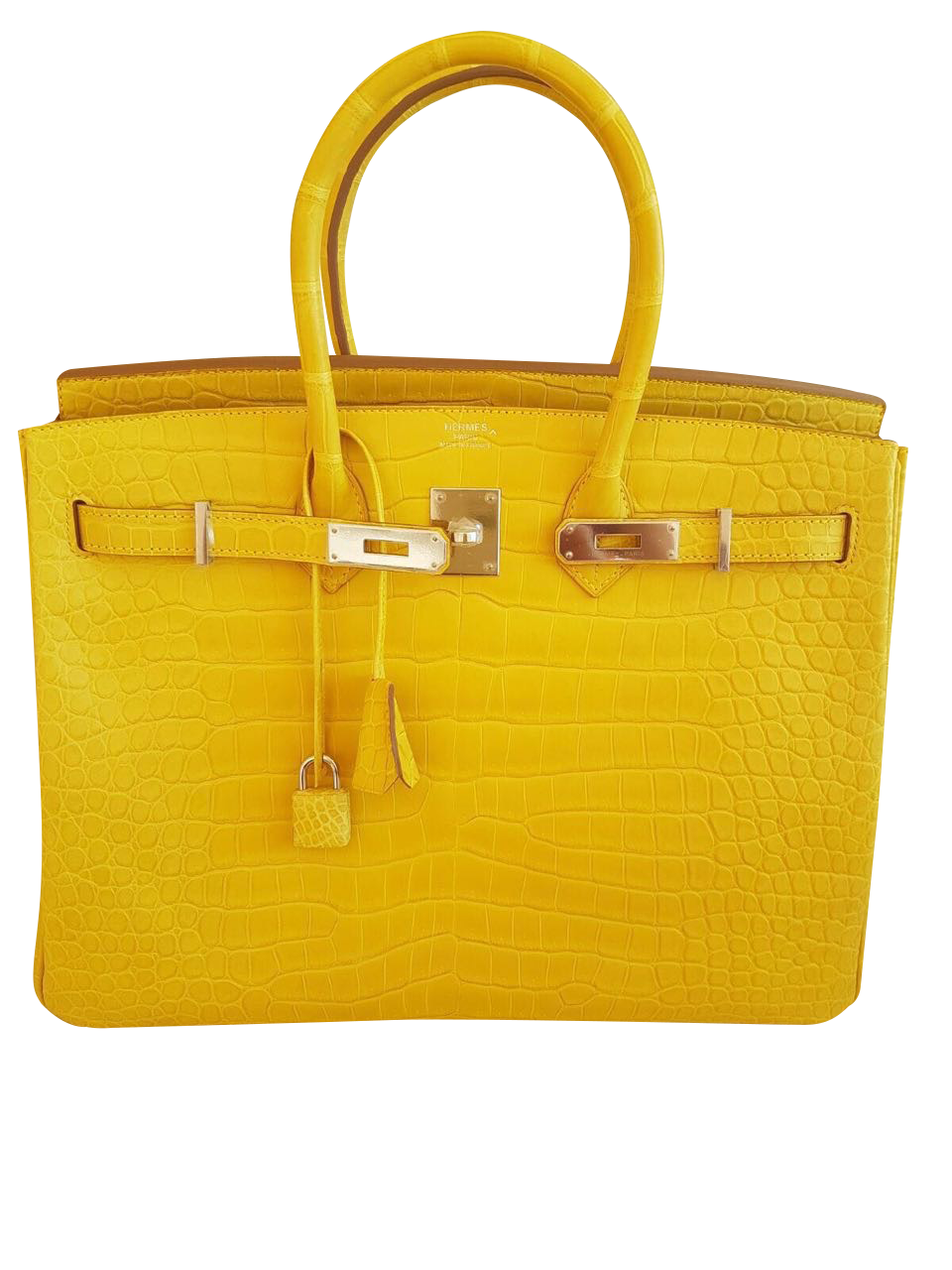 9440445345 Sac Hermès Birkin 30 Alligator Jaune Mimosa | MODE IN LUXE - French ...